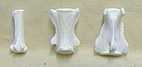 Picture of this lot Cougar Mountain Lion Bones, Scapula, vertebrae, foot bones