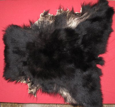 Picture of this lot Tanned Black Bear Pieces