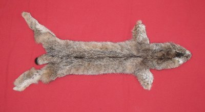 Picture of this lot Tanned Canadian Lynx Hides, Furs, Pelts, Skins