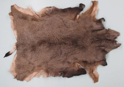 Picture of this lot Tanned Mule Deer Hides, Furs, Pelts, Skins