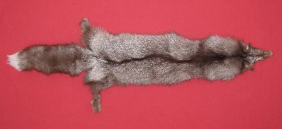 Picture of this lot Tanned Brown Silver Fox Hides, Furs, Pelts, Skins