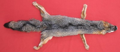 Picture of this lot Tanned Grey Fox Hides, Furs, Pelts, Skins