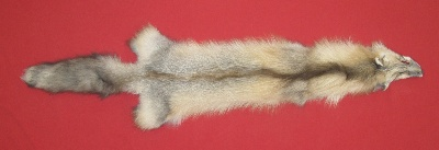 Picture of this lot Tanned Pearl Cross Fox Hides, Furs, Pelts, Skins