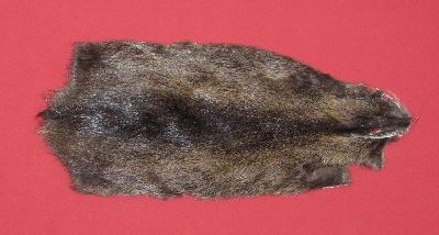 Picture of this lot Tanned Nutria Hides, Furs, Pelts, Skins