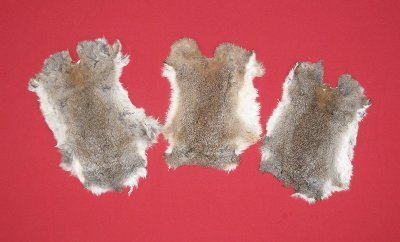 Picture of this lot Tanned Furs - Domestic Rabbit