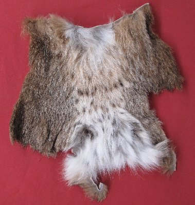 Picture of this lot Tanned Furs - Misc. Pieces