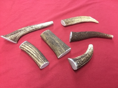 Picture of this lot Elk Antler Dog Chews