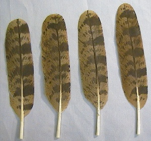 Picture of this lot Owl Feathers Imitation