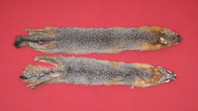 Picture of this lot Raw Fur - Grey Fox