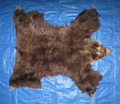 Picture of this lot Tanned Grizzly Bear Hides, Furs, Pelts, Skins