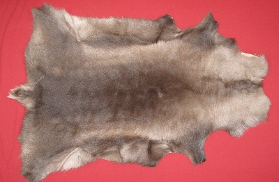 Picture of this lot Tanned Furs - Caribou Hides