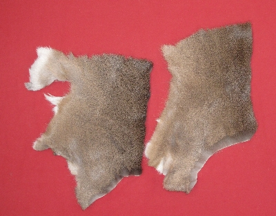 Picture of this lot Tanned White Tail Deer Pieces
