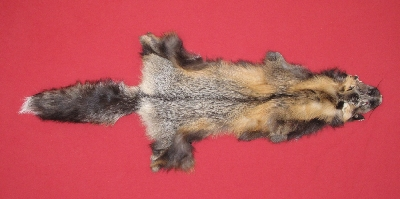 Picture of this lot Tanned Cross Fox Hides, Furs, Pelts, Skins