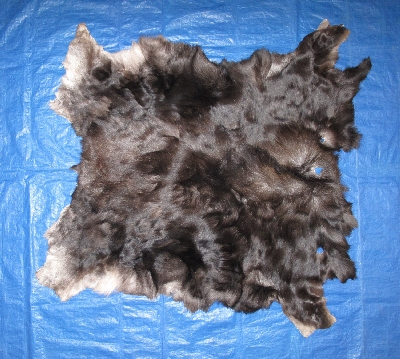 Picture of this lot Tanned Moose Hides, Furs, Pelts, Skins