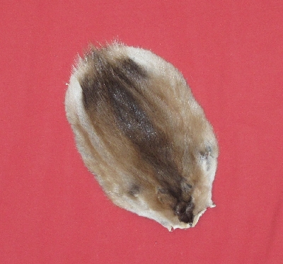 Picture of this lot Tanned Muskrat Hides, Furs, Pelts, Skins