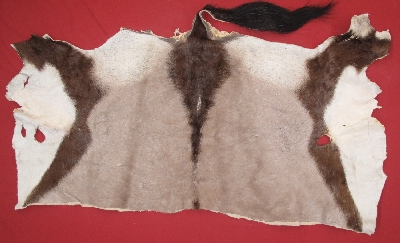 Picture of this lot Tanned Furs - Miscellaneous